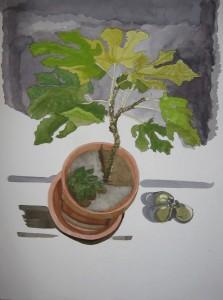 Fig Tree Painting
